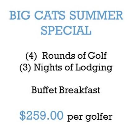 Big Cats Summer Special